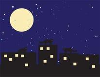 νύχτα γατών Στοκ φωτογραφία με δικαίωμα ελεύθερης χρήσης