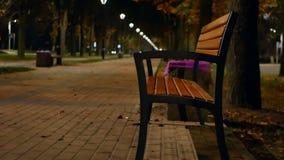 Νύχτα δέντρων πάρκων λαμπτήρων απόθεμα βίντεο