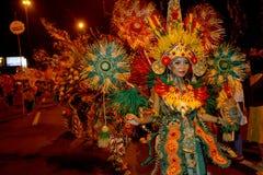 Νύχτα καρναβάλι στοκ φωτογραφίες με δικαίωμα ελεύθερης χρήσης