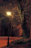 νύχτα λαμπτήρων στοκ εικόνες με δικαίωμα ελεύθερης χρήσης