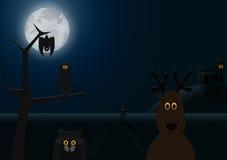 νύχτα πτώσεων Στοκ Εικόνα