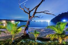 Νύχτα στην τροπική παραλία. Ταϊλάνδη Στοκ Εικόνες