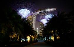 Νύχτα στη Σιγκαπούρη Στοκ Εικόνες