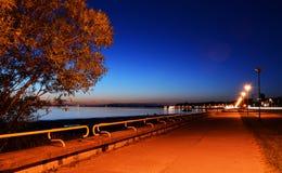 Νύχτα Ταλίν Στοκ Εικόνα