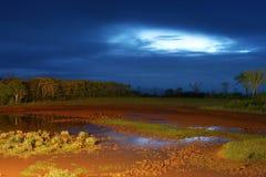 νύχτα τοπίων της Αφρικής Στοκ φωτογραφία με δικαίωμα ελεύθερης χρήσης