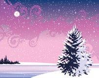 νύχτα τοπίων χειμερινή Απεικόνιση αποθεμάτων