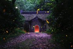 Νύχτα των fireflies Στοκ εικόνες με δικαίωμα ελεύθερης χρήσης