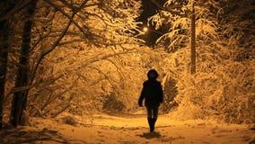 Νύχτα χιονιού φιλμ μικρού μήκους