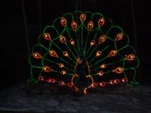 Νύχτα Χριστουγέννων στο ζωολογικό κήπο Στοκ εικόνα με δικαίωμα ελεύθερης χρήσης