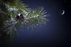 Νύχτα Χριστουγέννων τέχνης Στοκ Εικόνες