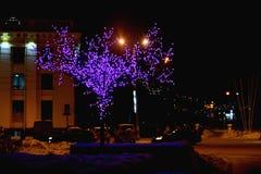 νύχτα Στοκ Εικόνα
