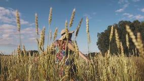 Ξένοιαστη νέα γυναίκα που περπατά μέσω του τομέα σε ένα φωτεινό φόρεμα και ένα καπέλο αχύρου κίνηση αργή απόθεμα βίντεο