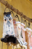 Ξήρανση δερμάτων γουνών κουνελιών για την πώληση Στοκ Εικόνες