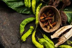 Ξήρανση πιπεριών Στοκ Φωτογραφίες