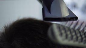 Ξήρανση τρίχας ατόμων στο κατάστημα κουρέων Τρίχα προσδιορισμού κουρέων με το στεγνωτήρα απόθεμα βίντεο