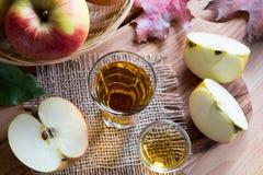 Ξίδι μηλίτη της Apple σε ένα γυαλί σε έναν ξύλινο πίνακα, με τα μήλα Στοκ φωτογραφία με δικαίωμα ελεύθερης χρήσης