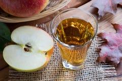 Ξίδι μηλίτη της Apple σε ένα γυαλί, με τα μήλα και τα φύλλα φθινοπώρου Στοκ εικόνες με δικαίωμα ελεύθερης χρήσης
