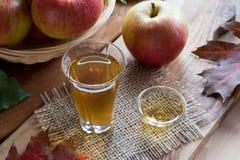 Ξίδι μηλίτη της Apple σε ένα γυαλί, με τα μήλα στο υπόβαθρο Στοκ εικόνα με δικαίωμα ελεύθερης χρήσης