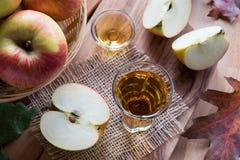 Ξίδι μηλίτη της Apple σε ένα γυαλί, με τα μήλα στο υπόβαθρο Στοκ εικόνες με δικαίωμα ελεύθερης χρήσης