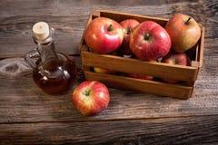 Ξίδι μηλίτη της Apple Στοκ φωτογραφία με δικαίωμα ελεύθερης χρήσης