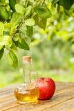 Ξίδι της Apple στο μπουκάλι γυαλιού και φρέσκο κόκκινο μήλο στον ξύλινο κάπρο Στοκ φωτογραφίες με δικαίωμα ελεύθερης χρήσης