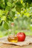 Ξίδι της Apple στο μπουκάλι γυαλιού και φρέσκο κόκκινο μήλο στον ξύλινο κάπρο Στοκ φωτογραφία με δικαίωμα ελεύθερης χρήσης