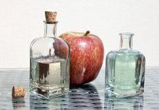 Ξίδι και μήλο μηλίτη της Apple Στοκ εικόνες με δικαίωμα ελεύθερης χρήσης