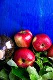 Ξίδι μηλίτη της Apple Ένα μπουκάλι γυαλιού στο μπλε υπόβαθρο κόκκινο μήλων Τοπ όψη Στοκ εικόνες με δικαίωμα ελεύθερης χρήσης