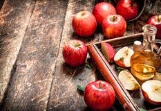 Ξίδι μηλίτη της Apple, κόκκινα μήλα στον παλαιό δίσκο Στοκ φωτογραφία με δικαίωμα ελεύθερης χρήσης