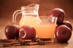 Ξίδι μηλίτη της Apple Στοκ Εικόνες