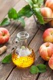 Ξίδι μηλίτη της Apple Στοκ Φωτογραφία