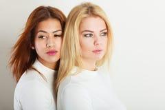 Ξανθοί και μελαχροινοί φίλοι από κοινού Στοκ εικόνα με δικαίωμα ελεύθερης χρήσης