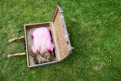 Ξανθό κορίτσι παιδιών μέσα σε μια βαλίτσα στον πράσινο χορτοτάπητα χλόης Στοκ εικόνες με δικαίωμα ελεύθερης χρήσης