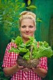 Ξανθό κορίτσι σε ένα πράσινο καλάθι εκμετάλλευσης υποβάθρου με το μαρούλι Στοκ φωτογραφία με δικαίωμα ελεύθερης χρήσης