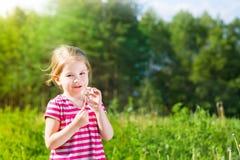 Ξανθό μικρό κορίτσι με την πικραλίδα στον ήλιο Στοκ φωτογραφίες με δικαίωμα ελεύθερης χρήσης