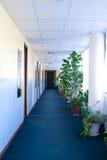 ξενοδοχείο διαδρόμων Στοκ Εικόνα