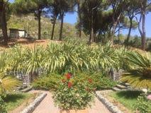 Ξενοδοχείο Argento πάρκων στοκ εικόνες με δικαίωμα ελεύθερης χρήσης