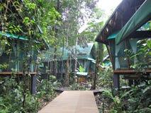 Ξενοδοχείο πολυτελείας στη μέση του δάσους στη Κόστα Ρίκα, Στοκ φωτογραφία με δικαίωμα ελεύθερης χρήσης