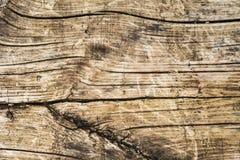 Ξεπερασμένη ξύλινη σύσταση Στοκ Εικόνες
