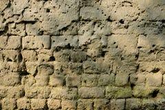 Ξεπερασμένος χωμάτινος τοίχος στο θερμό φως του ήλιου άνοιξη στοκ φωτογραφία