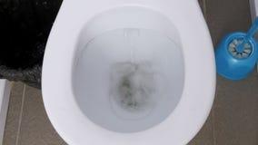 Ξεπλυμένη τουαλέτα κορυφή κάτω από την άποψη απόθεμα βίντεο