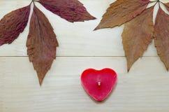 Ξεράνετε τα φύλλα και ένα κόκκινο διαμορφωμένο καρδιά κερί Στοκ Εικόνα