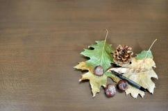Ξεράνετε τα φύλλα και τα κάστανα στην ξύλινη επιφάνεια Στοκ εικόνα με δικαίωμα ελεύθερης χρήσης