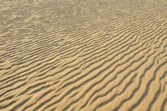 Ξεράνετε την κυματισμένη χρυσή άμμο, ιδανική για τα υπόβαθρα Στοκ φωτογραφία με δικαίωμα ελεύθερης χρήσης