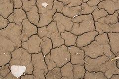 ξεράνετε τη λάσπη Στοκ Φωτογραφία