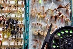 Ξεράνετε τη μύγα ή τη νύμφη; Στοκ εικόνες με δικαίωμα ελεύθερης χρήσης