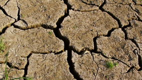 Ξεράνετε τη ραγισμένη γη κατά τη διάρκεια της ξηρασίας απόθεμα βίντεο