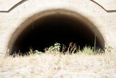 Ξεράνετε τη σπηλιά Στοκ φωτογραφία με δικαίωμα ελεύθερης χρήσης