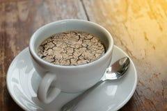 Ξεράνετε το ραγισμένο χώμα καμία βροχή στον καφέ Στοκ Εικόνα
