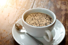Ξεράνετε το ραγισμένο χώμα καμία βροχή στον καφέ Στοκ Εικόνες